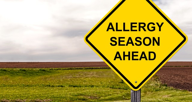 Tips to Prepare for Allergy Season