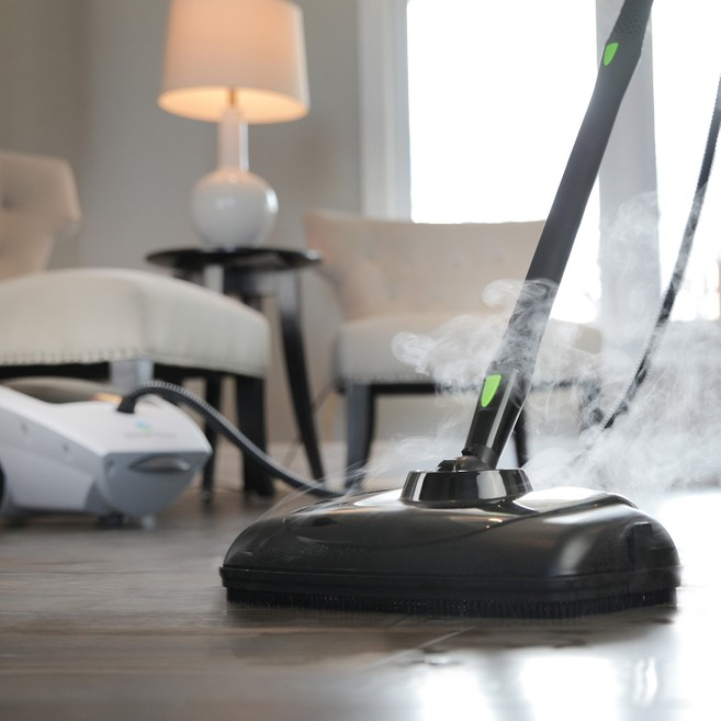 Fantastic Steam Cleaner Frequently Asked Questions Faq Creativecarmelina Interior Chair Design Creativecarmelinacom