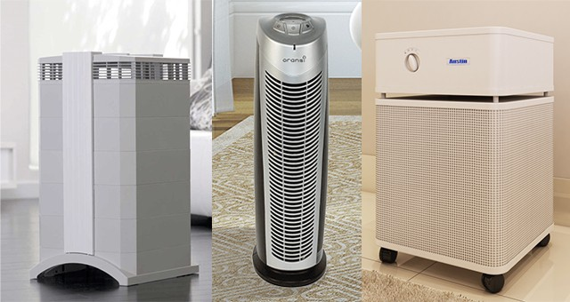 Top Air Purifiers For Allergies Sylvane
