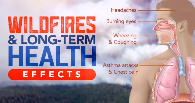 Wildfires And Long Term Health Effects Sylvane