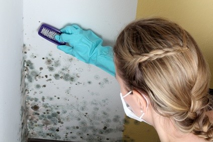 image of woman scrubbing mold
