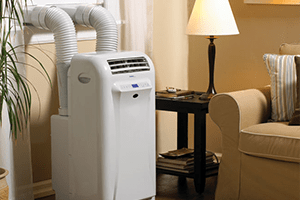 Exceptional Dual Hose Portable Air Conditioners
