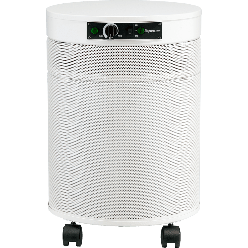 Top 10 Best Air Purifiers for Mold, Mildew and Virus in 2021