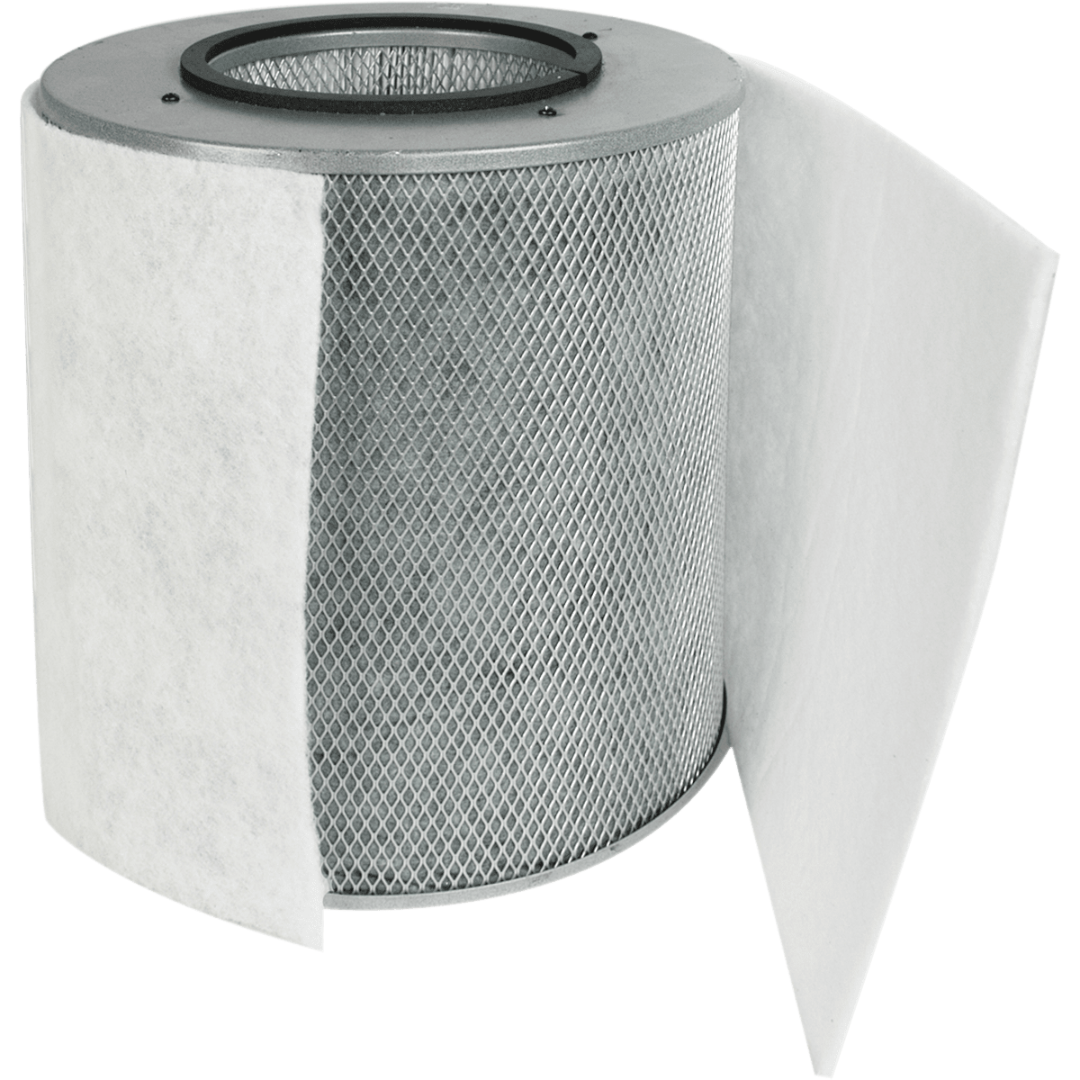 Austin Air Healthmate Replacement Filter with Prefilter