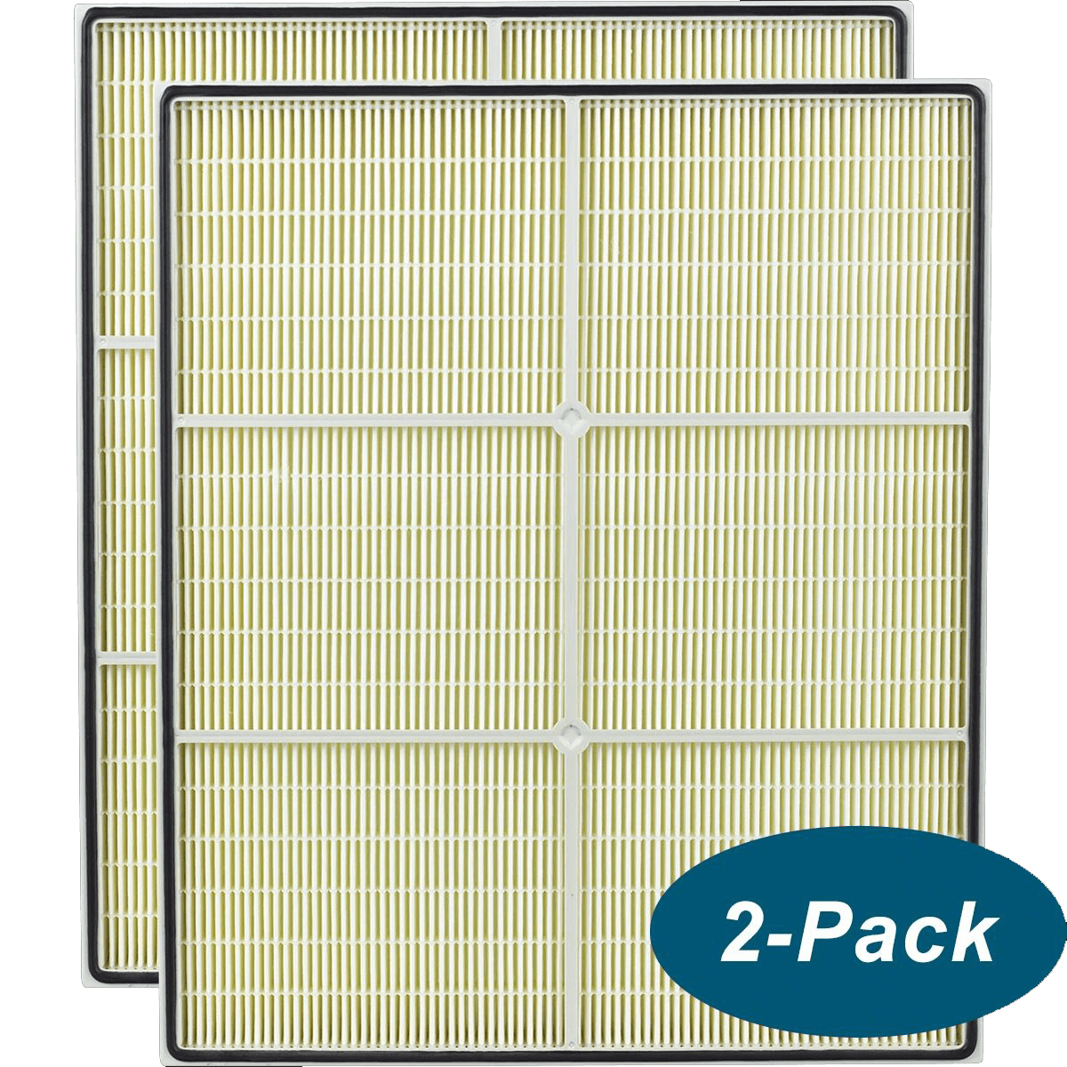 Dri-Eaz HEPA 500 Replacement HEPA Filter - 2 PACK (F321) dr1460