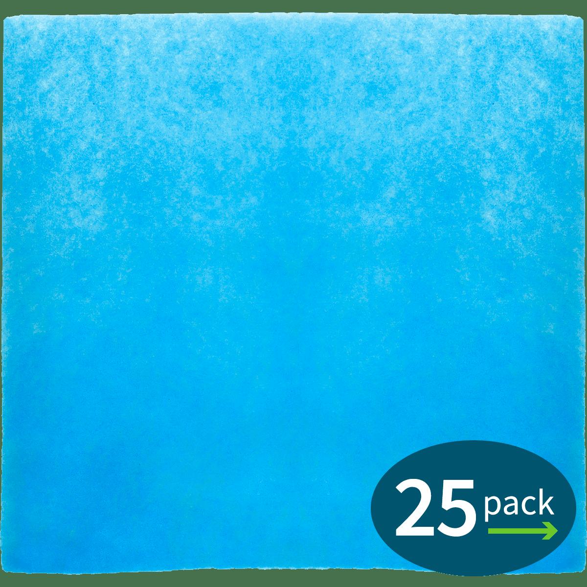 Phoenix Guardian Spun Polyester Pre-Filter 24 x 24 x 1 (4023374) - CASE OF 25 ph4269