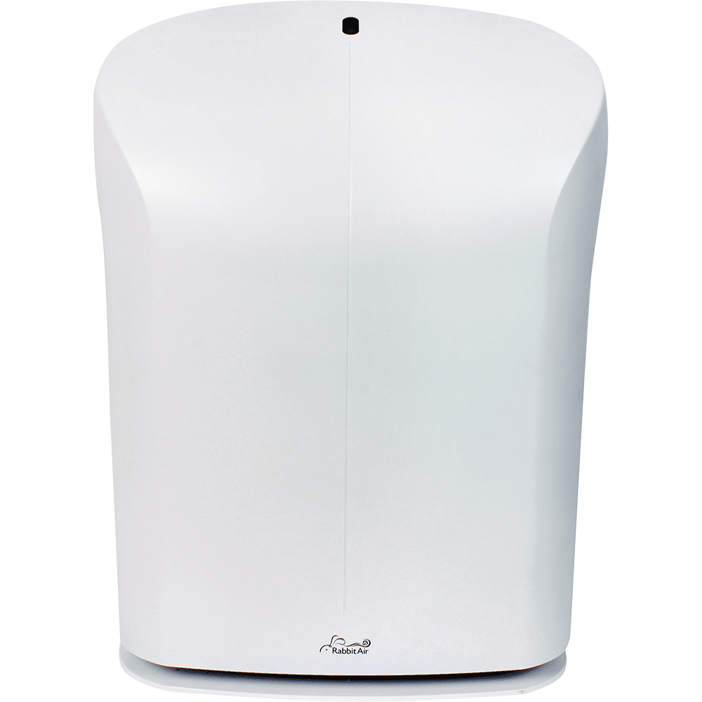Image of Rabbit Air BioGS Air Purifier